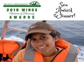 SEA AWARD WINNER 2018! 4