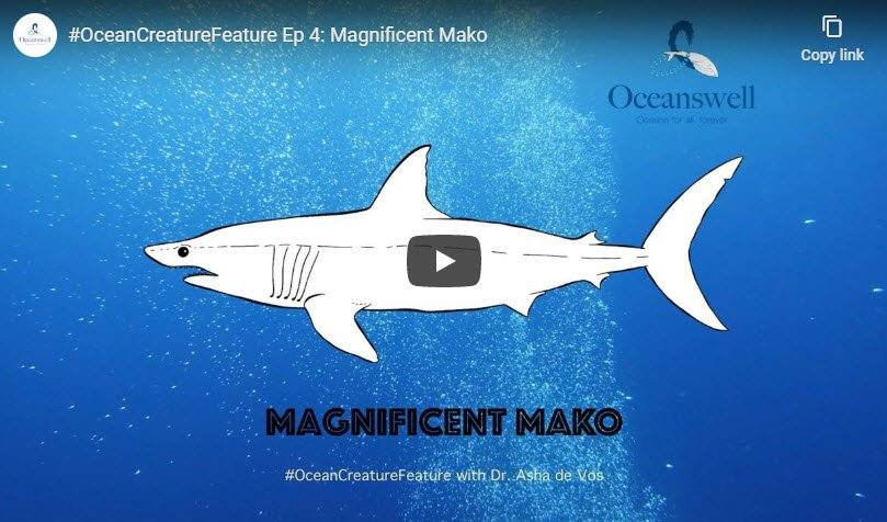 Episode 4: Magnificent Mako 7