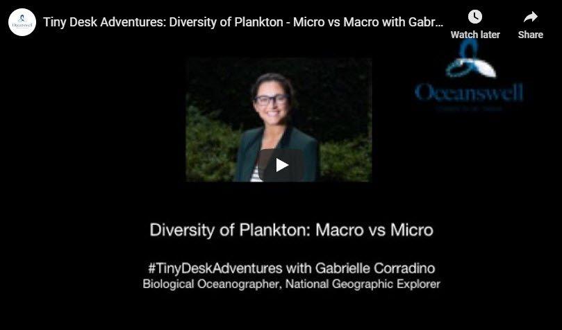 Episode 1: Diversity of Plankton 9