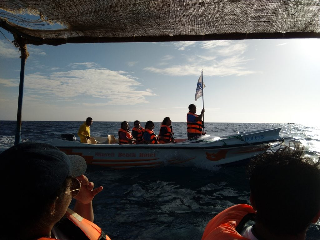 Marine Conservation Field Course 4