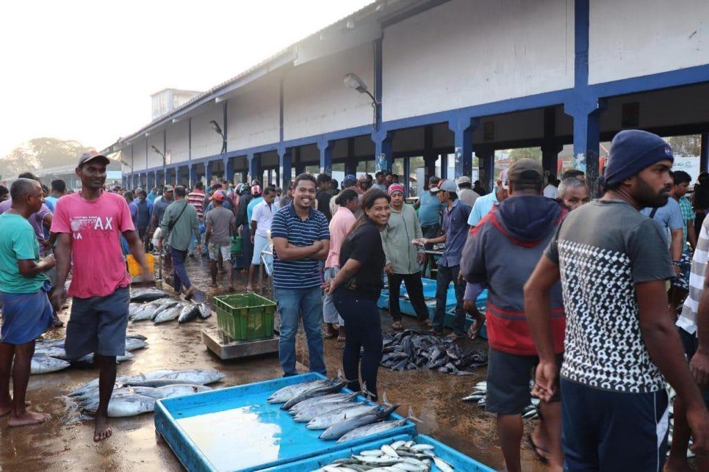Understanding fisher perceptions on the 2012 ban on thresher shark landings 4