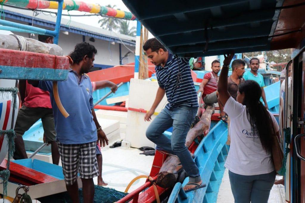 Understanding fisher perceptions on the 2012 ban on thresher shark landings 6